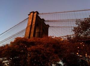 Fall in Brooklyn