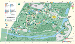 Bronx-Zoo-Map